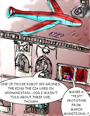 Minton: One of those robot spy-drones, the kind the CIA used in Afghanistan---odd I wasn't told about their use, though.  Shore: Maybe a